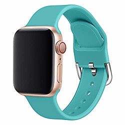 band compatible apple watch series 1 2 3 4 5 38/40mm 42/44mm flexible silicone washable breathable candy colors iwatch band (38/42mm large, 1)